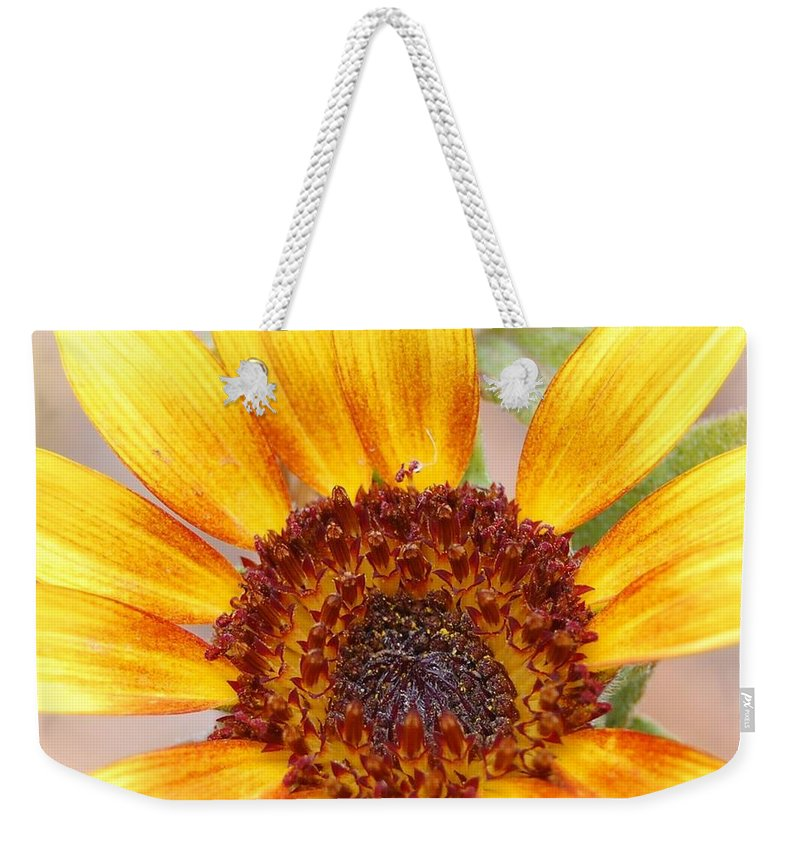 Sunflower Weekender Tote Bag featuring the photograph Yellow Sunflower by Amy Fose
