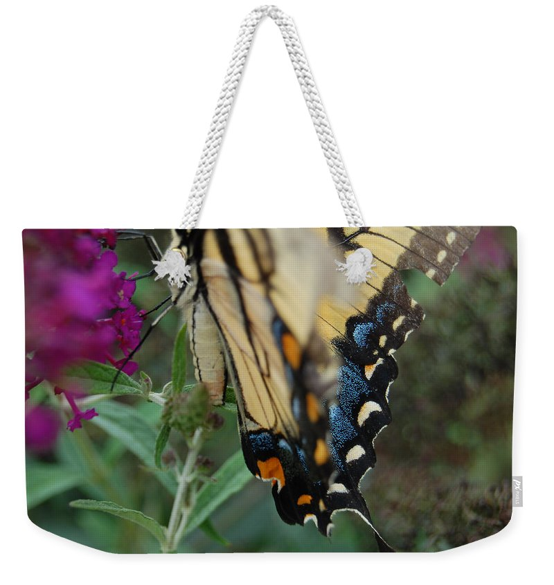 Butterfly. Yellow Weekender Tote Bag featuring the photograph Yellow Swallow by Robert Meanor