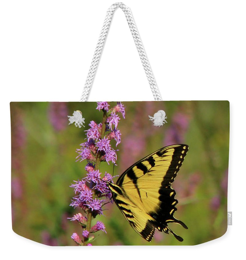Nature Weekender Tote Bag featuring the photograph Yellow Tiger by Peg Urban