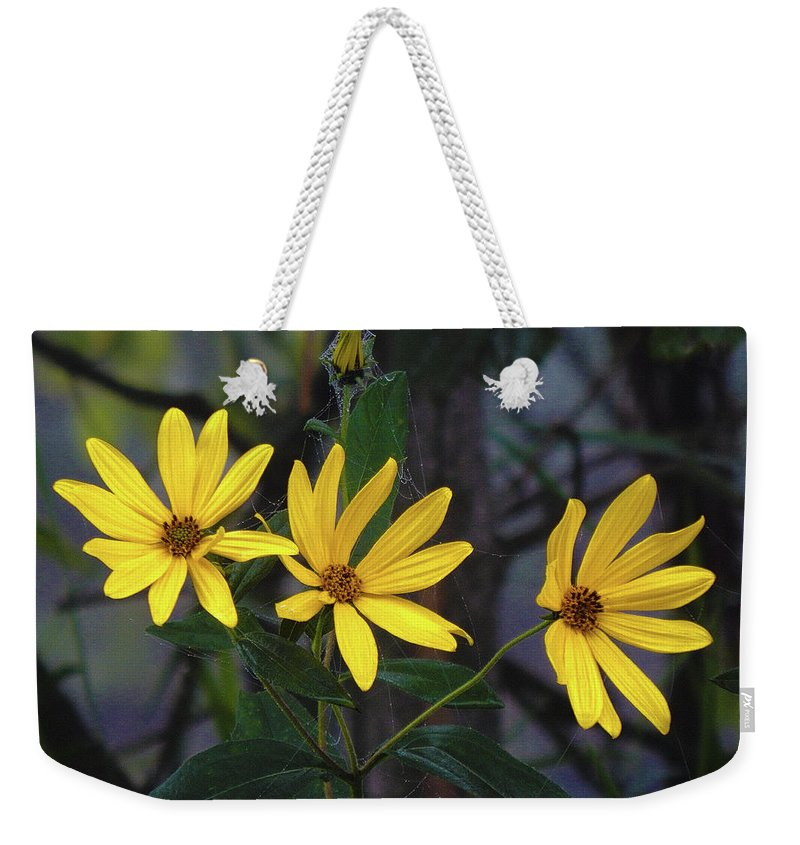 Summer Weekender Tote Bag featuring the photograph Yellow Trined by Wild Thing