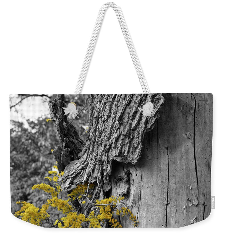 Bark Weekender Tote Bag featuring the photograph Yellow Tufts by Dylan Punke
