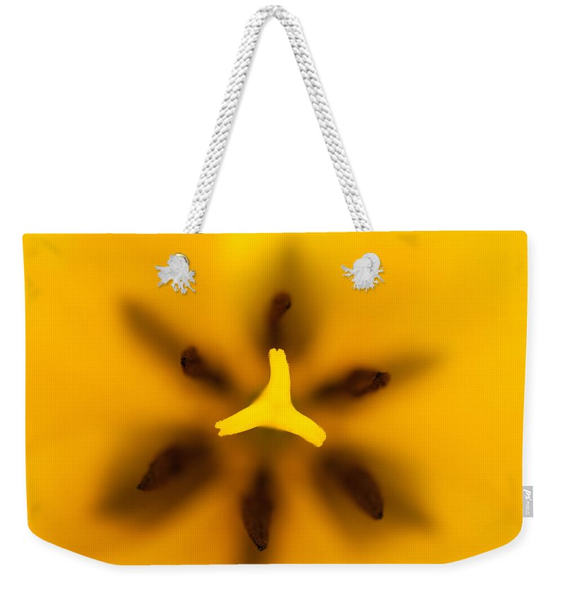 Tulip Weekender Tote Bag featuring the photograph Yellow Tulip by Sebastian Musial