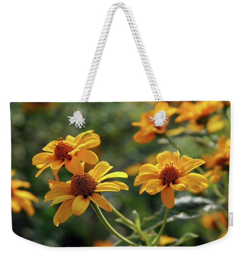 Yellow Weekender Tote Bag featuring the photograph Yellow Wildflowers 3680 H_2 by Steven Ward
