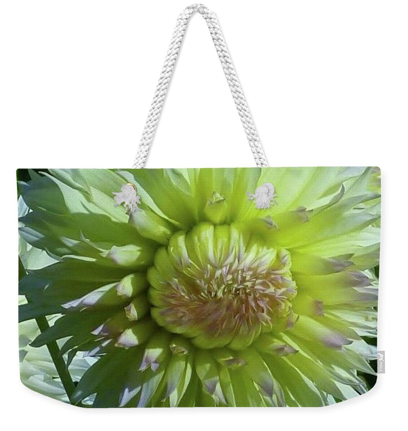 Yellow With White Tips Dahlia Flower Weekender Tote Bag featuring the photograph Yellow With White Dahlia Flower by Susan Garren