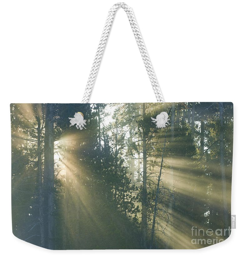 Yellowstone Weekender Tote Bag featuring the photograph Yellowstone Morning by Sandra Bronstein