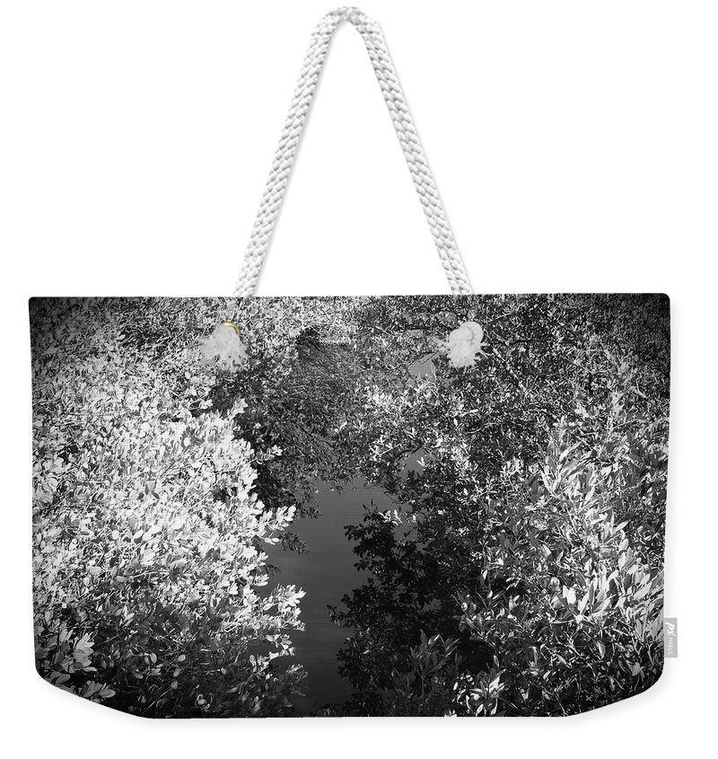 Trees Weekender Tote Bag featuring the photograph Yin Yang by Elie Wolf