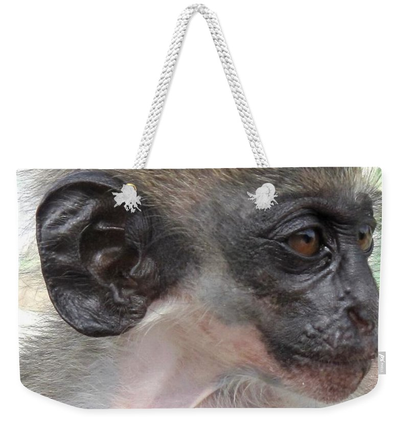 Verdant Weekender Tote Bag featuring the photograph Yoda Before Star Wars by Ian MacDonald