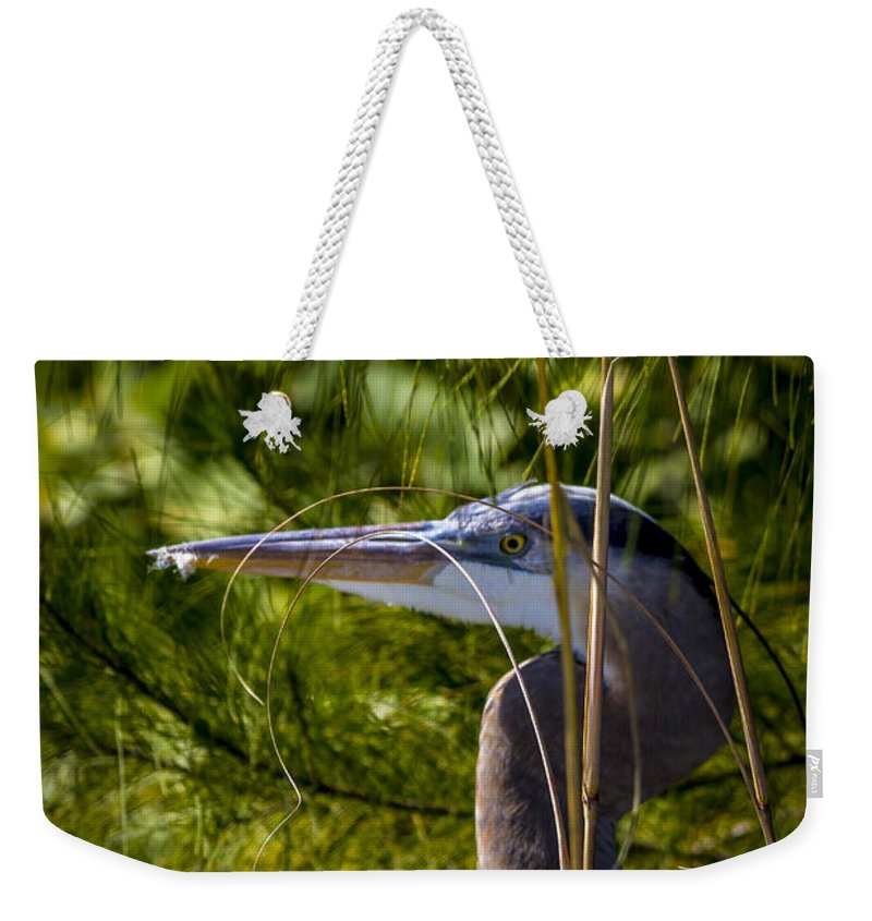 Cove Weekender Tote Bag featuring the photograph You Can't See Me by Marvin Spates