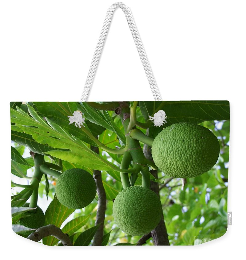 Breadfruit Weekender Tote Bag featuring the photograph Young Breadfruit by Mary Deal