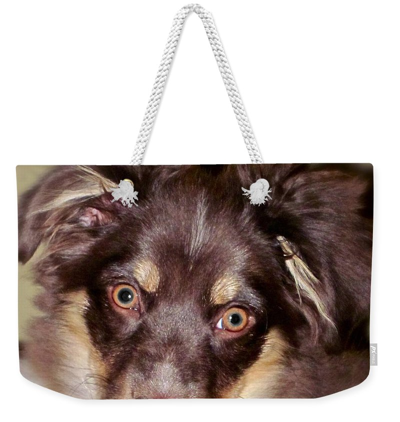 Dog Weekender Tote Bag featuring the photograph Young Lady by Gwyn Newcombe