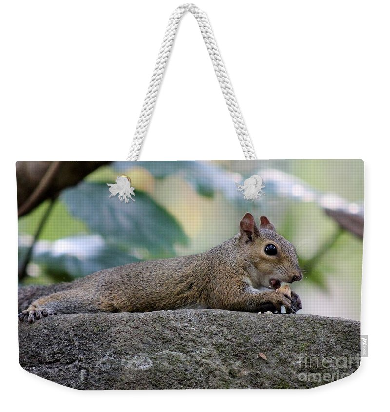 Squirrel Weekender Tote Bag featuring the photograph Yum by Mesa Teresita
