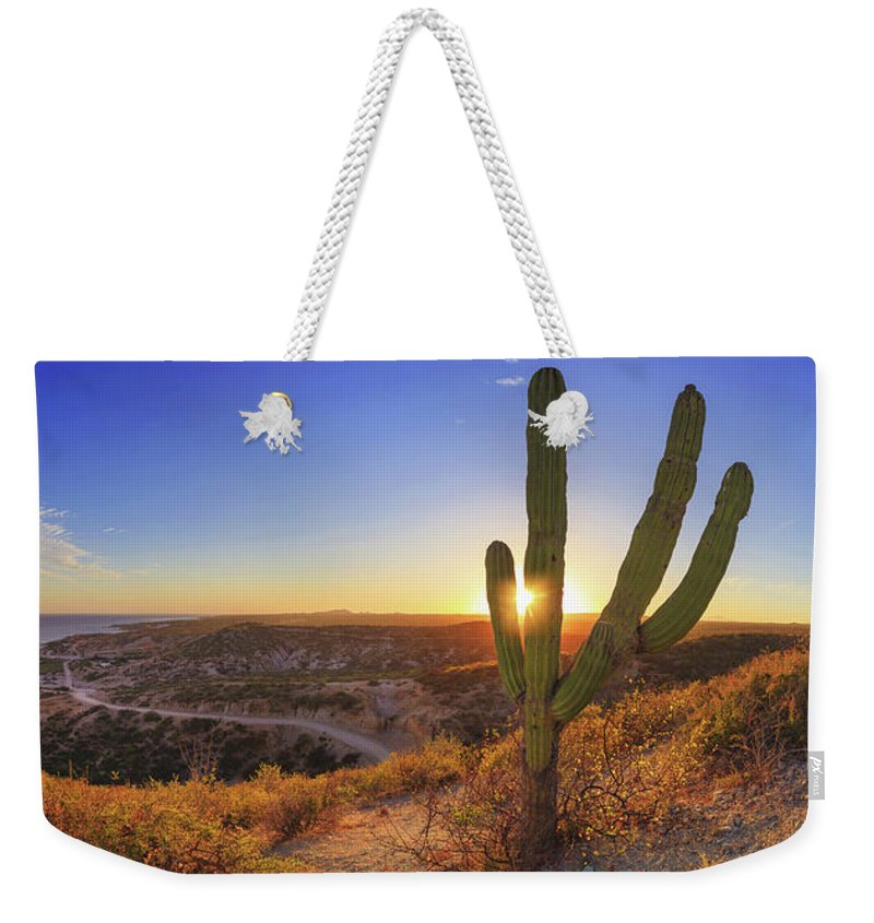 Sunset Weekender Tote Bag featuring the photograph Zacatitos by Josafat De la Toba