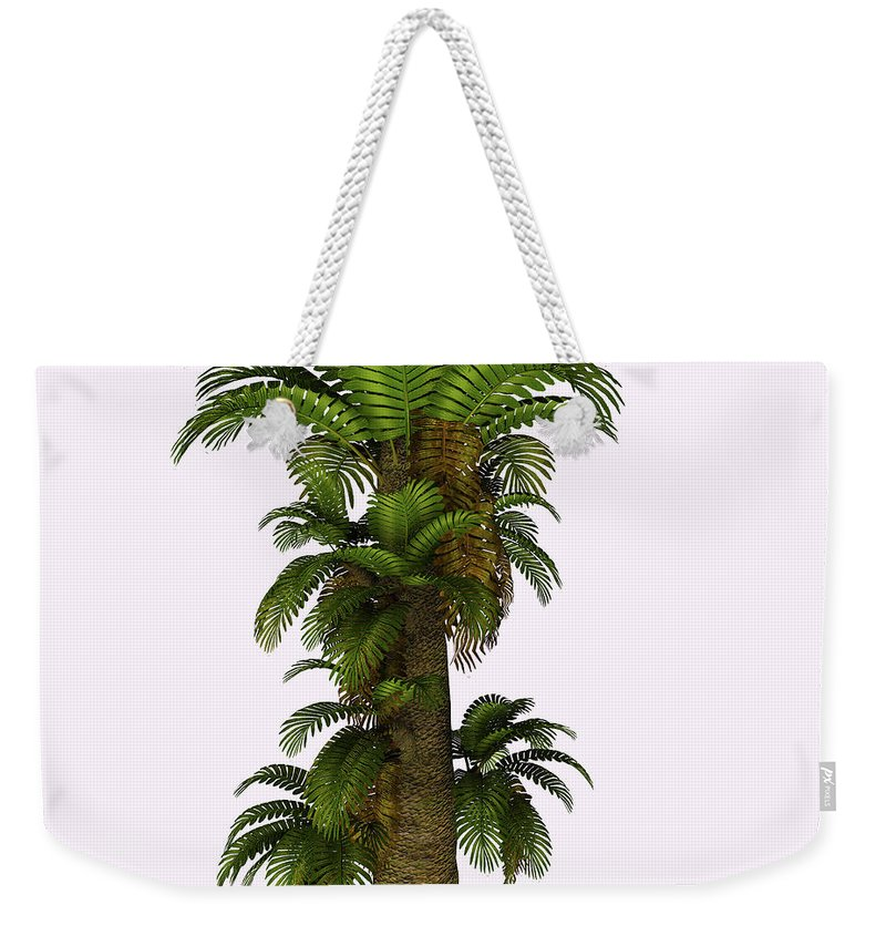 3d Illustration Weekender Tote Bag featuring the painting Zamites Tree by Corey Ford