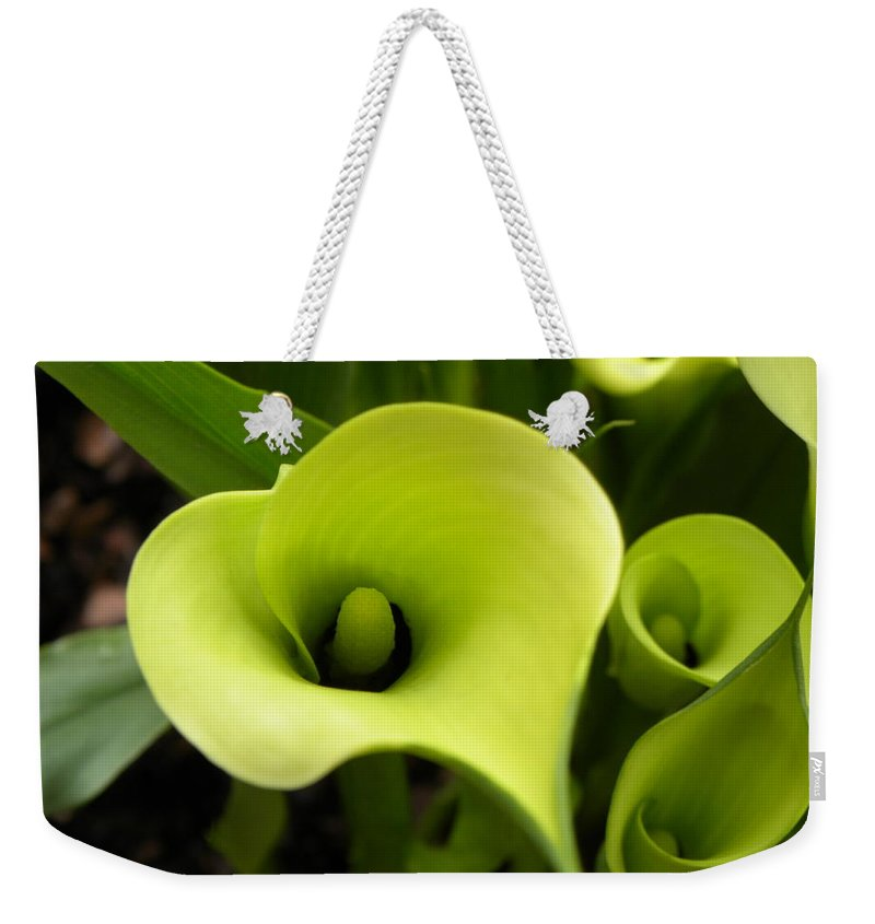 Nature Weekender Tote Bag featuring the photograph Calla Lilies by Shannon Turek