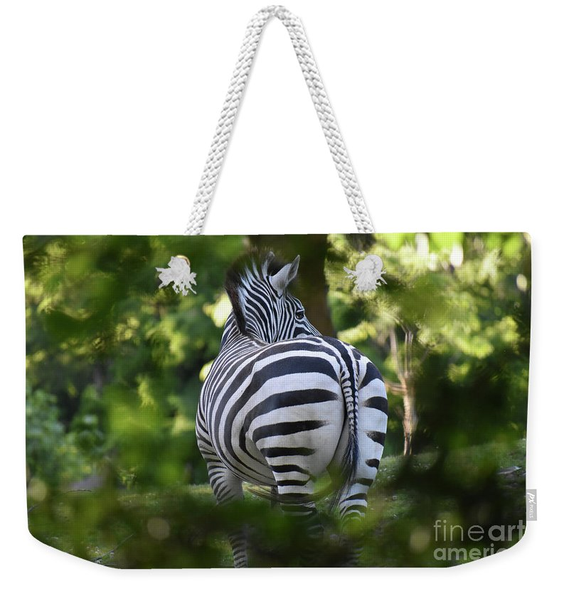Zebra Weekender Tote Bag featuring the photograph Zebra Curves And Stripes by Rose De Dan