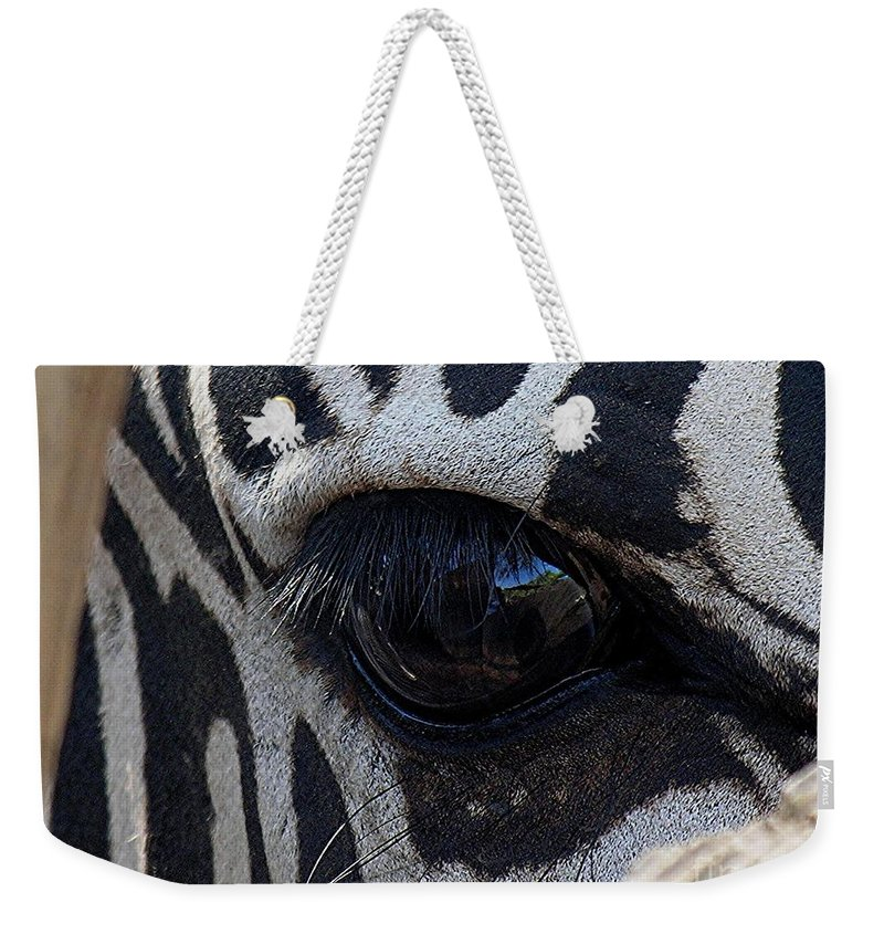 Zebra Weekender Tote Bag featuring the photograph Zebra Eye by Diane Greco-Lesser