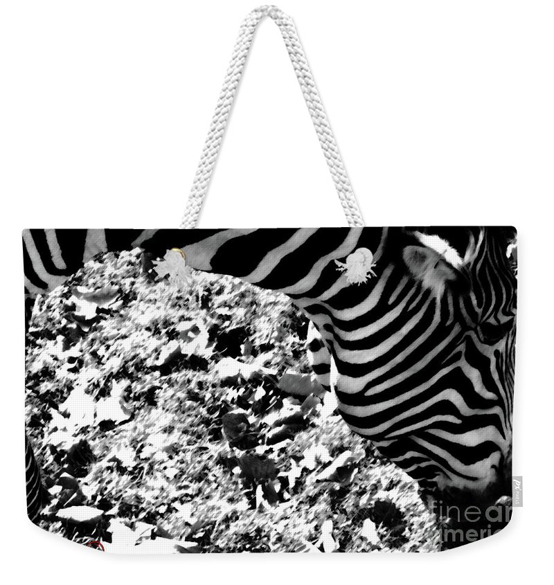 Zebra Weekender Tote Bag featuring the photograph Zebra2 by September Stone
