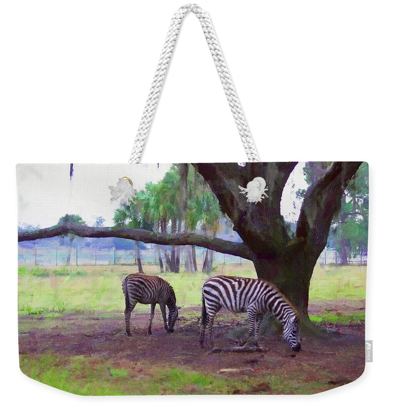 Alicegipsonphotographs Weekender Tote Bag featuring the photograph Zebras Under Oaks by Alice Gipson