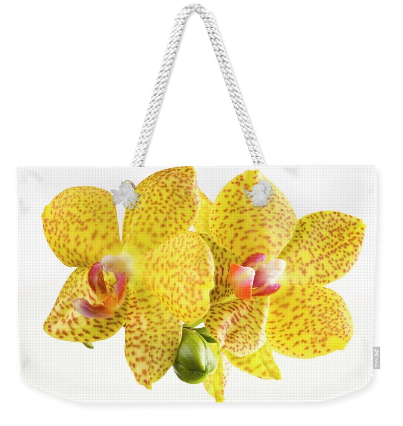 Thank You Weekender Tote Bag featuring the photograph Beautiful Yellow Orchid On White by Digihelion