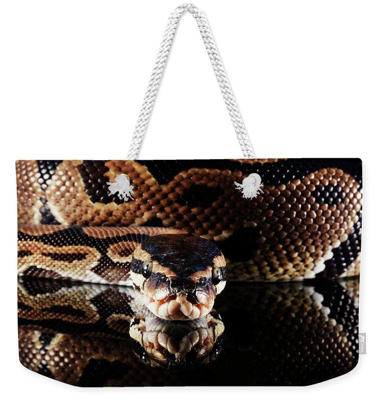 Copenhagen Weekender Tote Bag featuring the photograph Burmese Python by Henrik Sorensen
