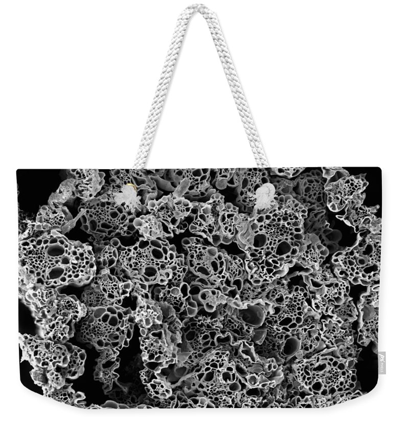 Microscope Weekender Tote Bag featuring the photograph Lemongrass Cross Section, Sem by Sheri Neva