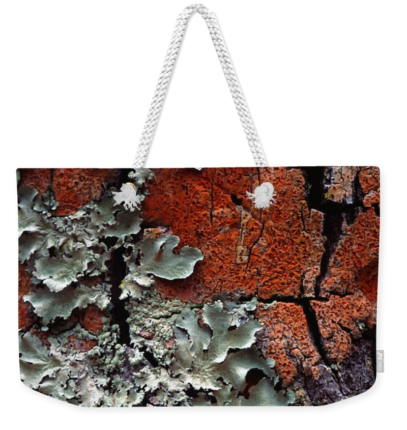 Built Structure Weekender Tote Bag featuring the photograph Lichen On Tree Bark by John Foxx
