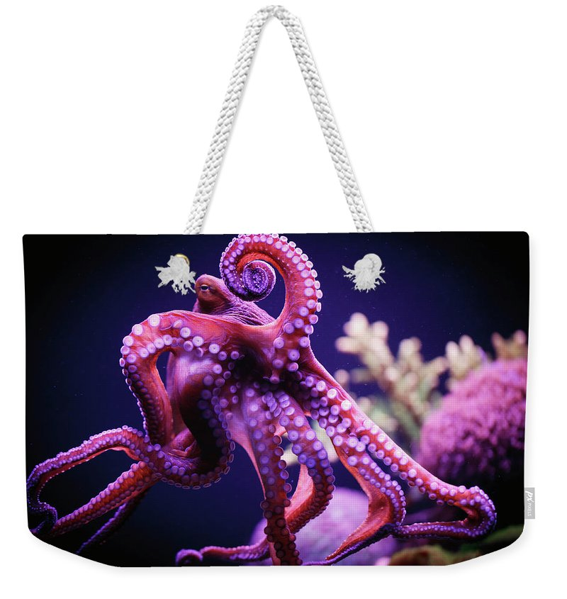 Underwater Weekender Tote Bag featuring the photograph Octopus by Reynold Mainse / Design Pics