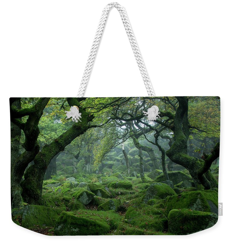 Tranquility Weekender Tote Bag featuring the photograph Padley Gorge by Duncan Fawkes