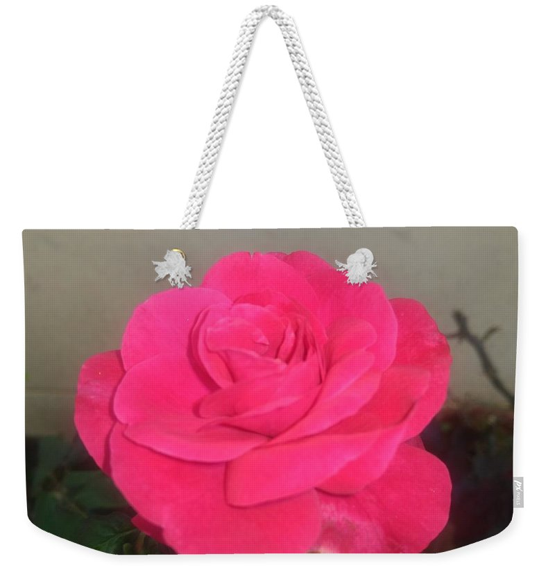 Weekender Tote Bag featuring the photograph Pink Rose by Nimu Bajaj and Seema Devjani
