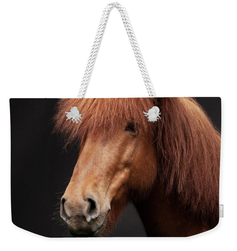 Horse Weekender Tote Bag featuring the photograph Portrait Of Horse by Arctic-images