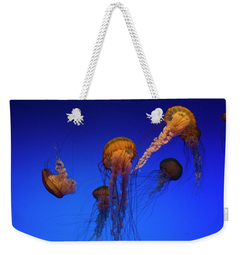 Eco Tourism Weekender Tote Bag featuring the photograph Sea Nettle by Lingbeek