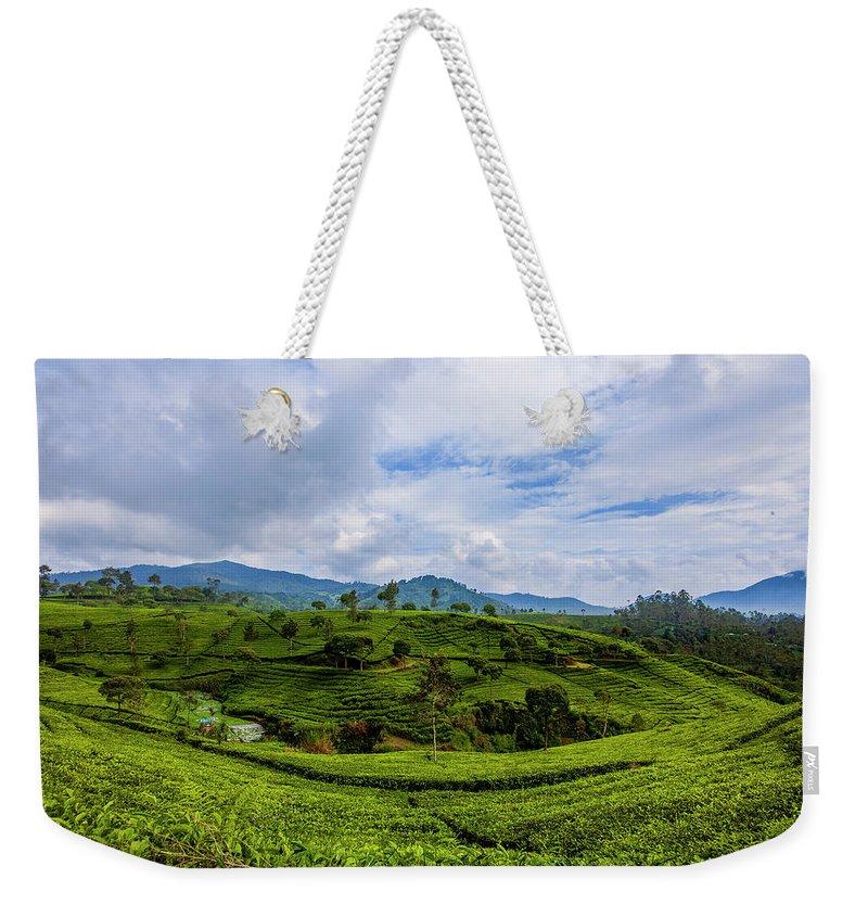 Nature Seekers Weekender Tote Bags