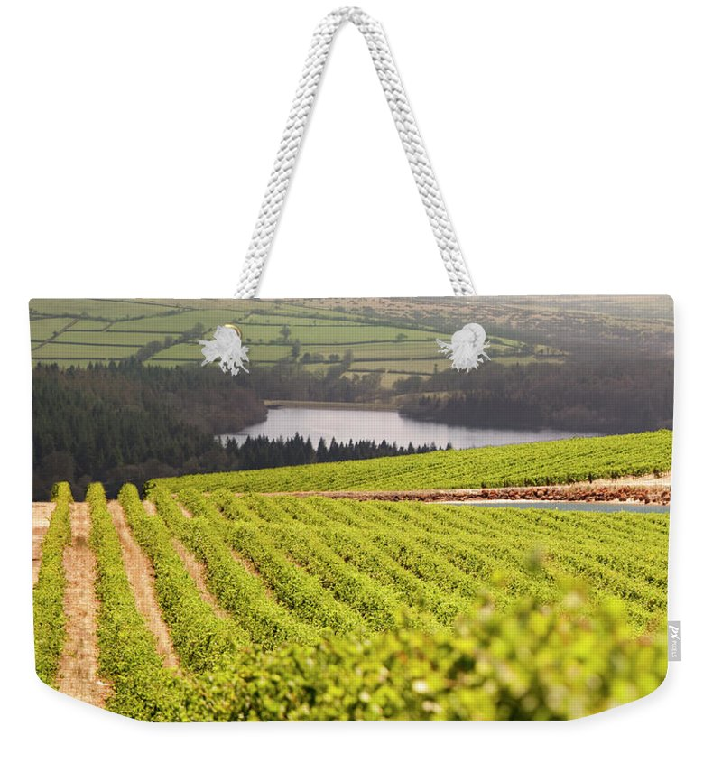 Scenics Weekender Tote Bag featuring the photograph Vineyard At Sunset by Lockiecurrie