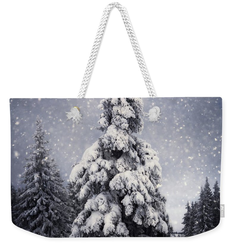 Scenics Weekender Tote Bag featuring the photograph Winter Tree by Borchee