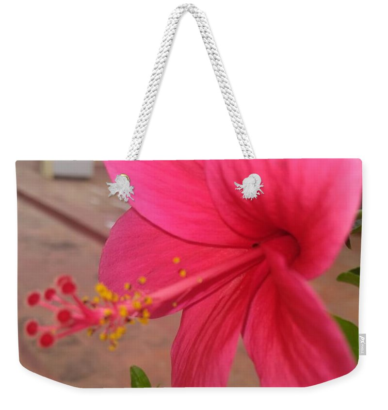 Weekender Tote Bag featuring the photograph Pink Hibiscus by Nimu Bajaj and Seema Devjani