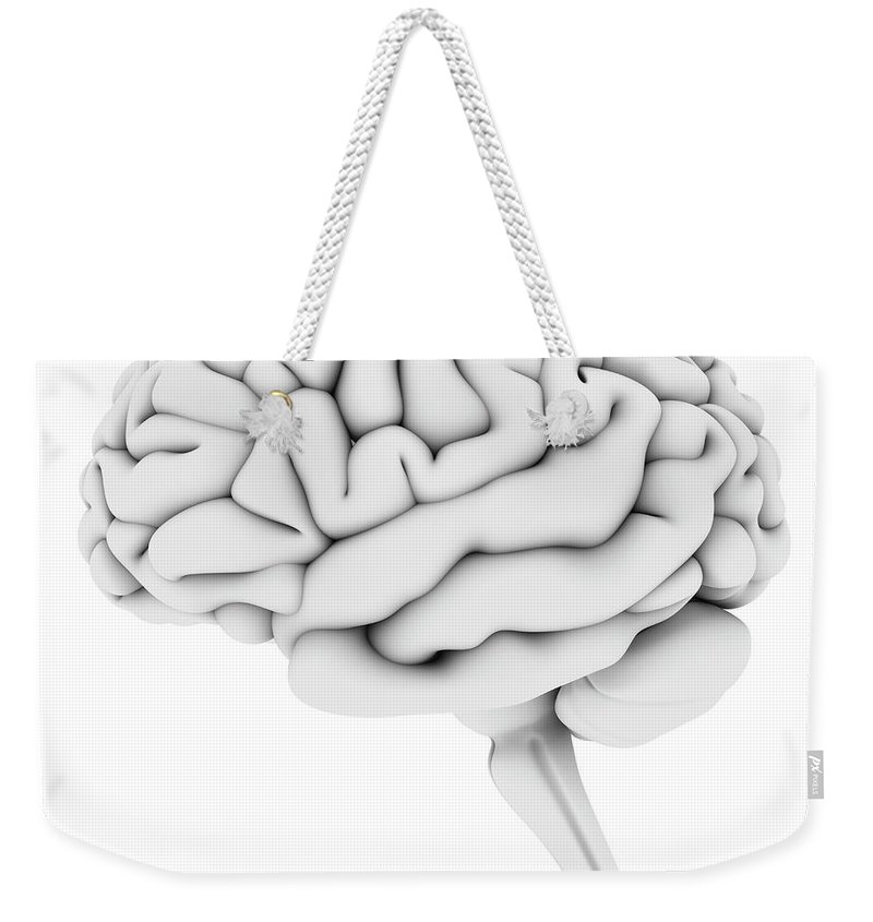 White Background Weekender Tote Bag featuring the digital art Brain, Artwork by Pasieka