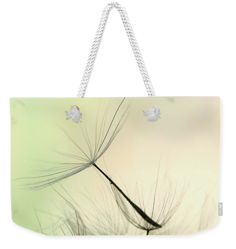 Single Flower Weekender Tote Bag featuring the photograph Dandelion Seed by Jasmina007