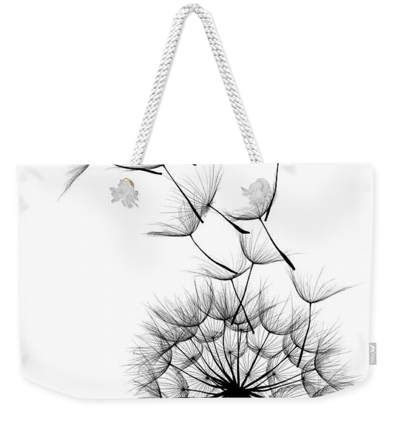 Wind Weekender Tote Bag featuring the photograph Dandelion by Sunnybeach