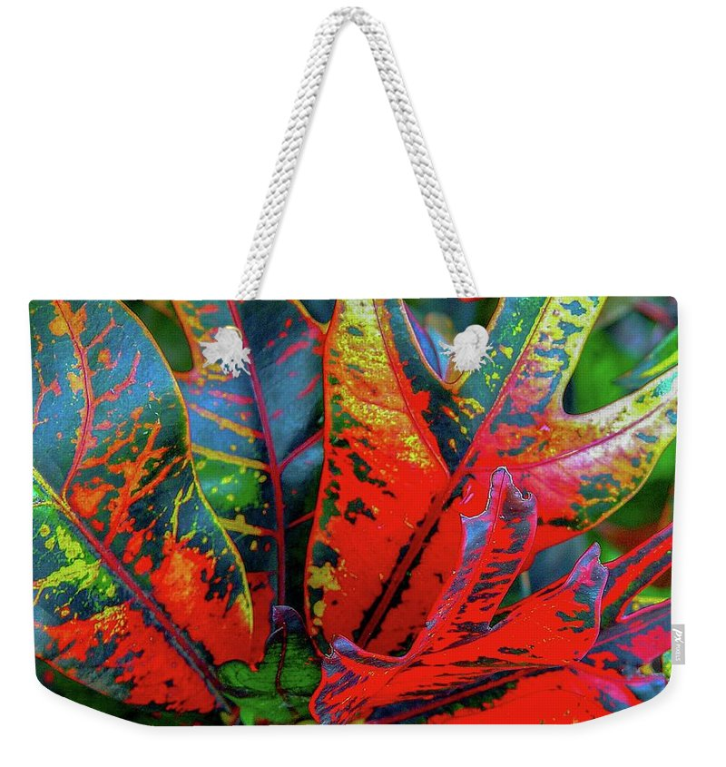 Leaf Weekender Tote Bag featuring the photograph Plants And Leaves Hawaii by D Davila