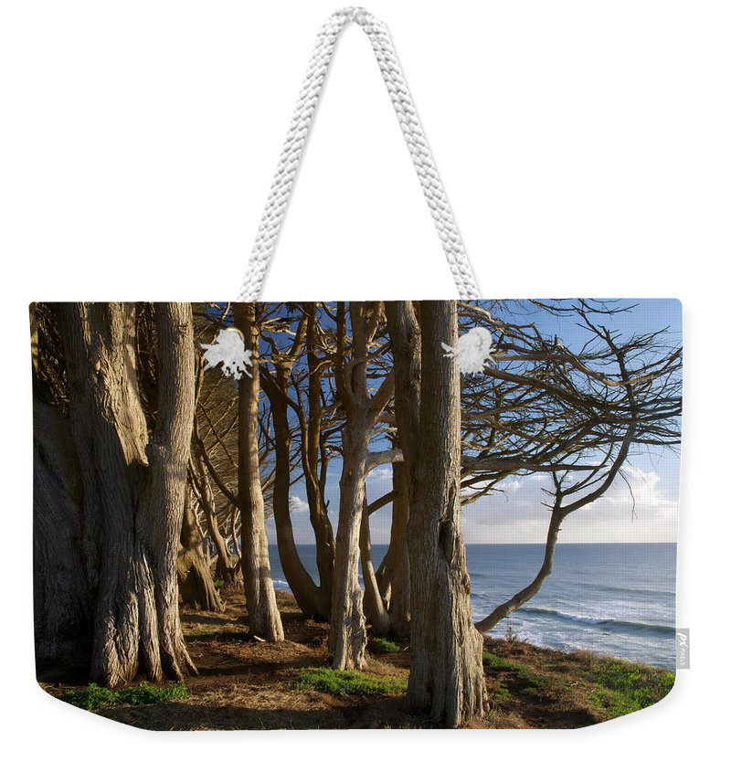 Tranquility Weekender Tote Bag featuring the photograph Rustic Davenport Coast by Mitch Diamond