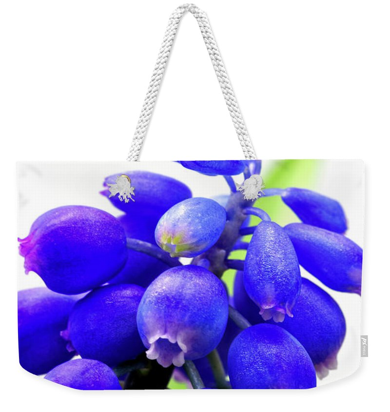 Tiny Weekender Tote Bag featuring the photograph blue bell flower cluster Grape hyacinth by Robert C Paulson Jr