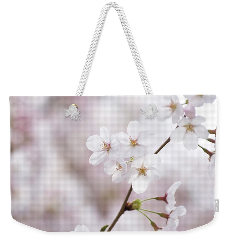 Celebration Weekender Tote Bag featuring the photograph Cherry Blossoms by Ooyoo