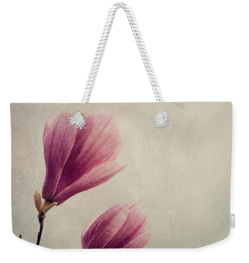 Magnolia Weekender Tote Bag featuring the photograph Magnolia On Canvas Textur by Jelena Jovanovic