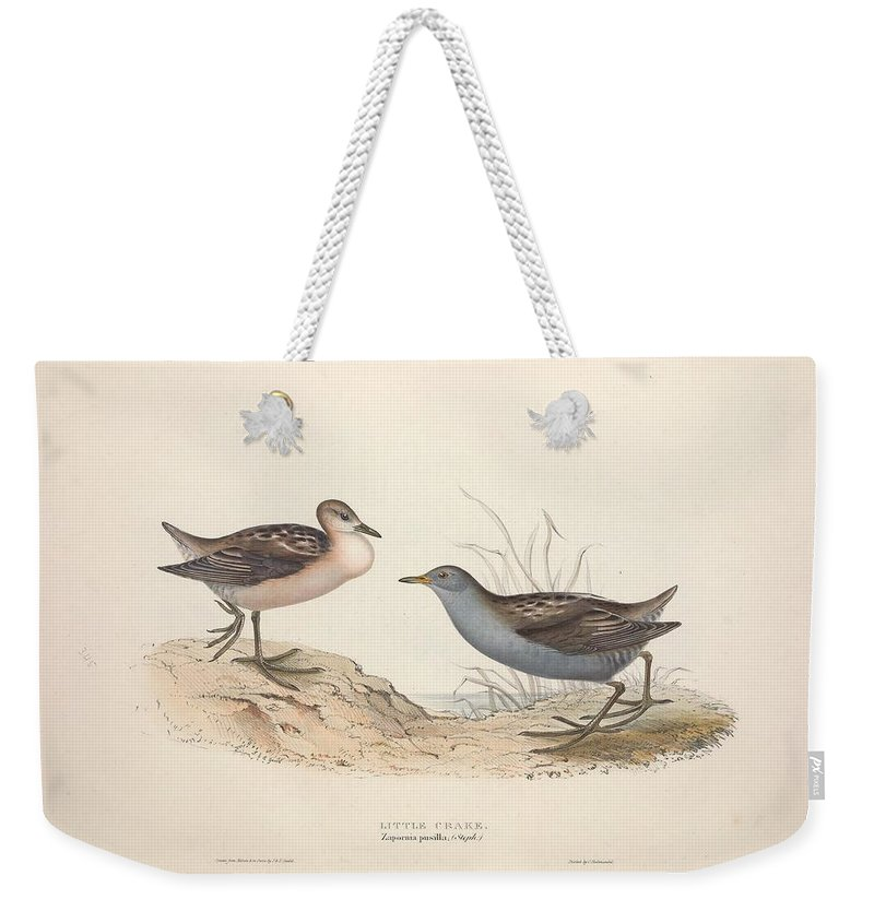 Nature Weekender Tote Bag featuring the painting Different Types Of Birds Illustrated By Charles Dessalines D Orbigny 1806-1876 21 by Charles Dessalines D Orbigny