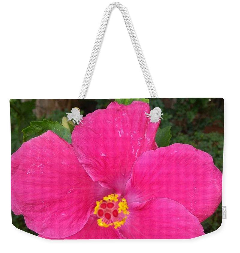 Weekender Tote Bag featuring the photograph Bright Pink Hibiscus by Nimu Bajaj and Seema Devjani