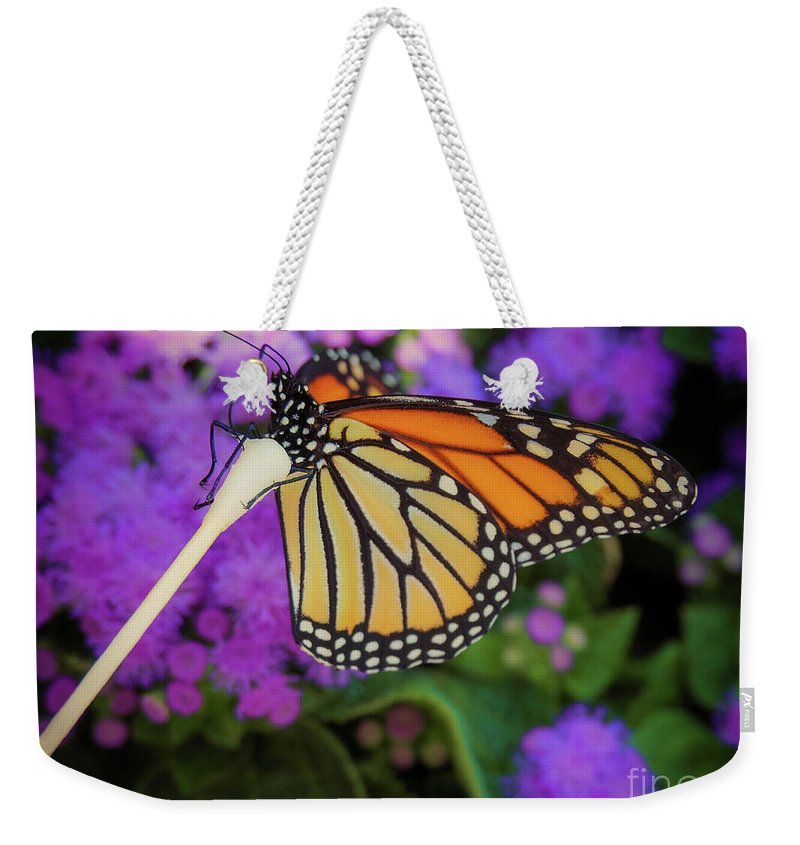 Flower Weekender Tote Bag featuring the photograph A Monarch's Lunch by Gina Matarazzo