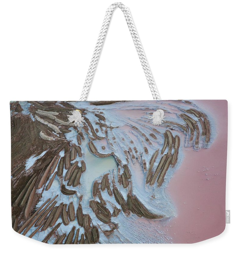 Extreme Terrain Weekender Tote Bag featuring the photograph Aerial View Of Salt Works Namibia by Peter Adams