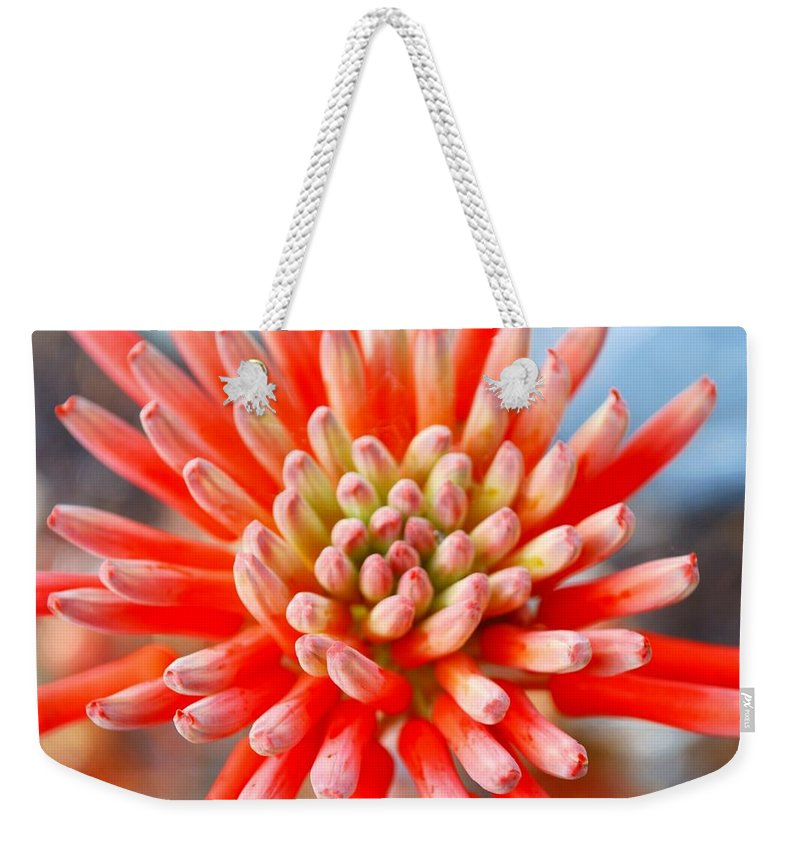Plant Attribute Weekender Tote Bag featuring the photograph Aloe Flower by Lazingbee