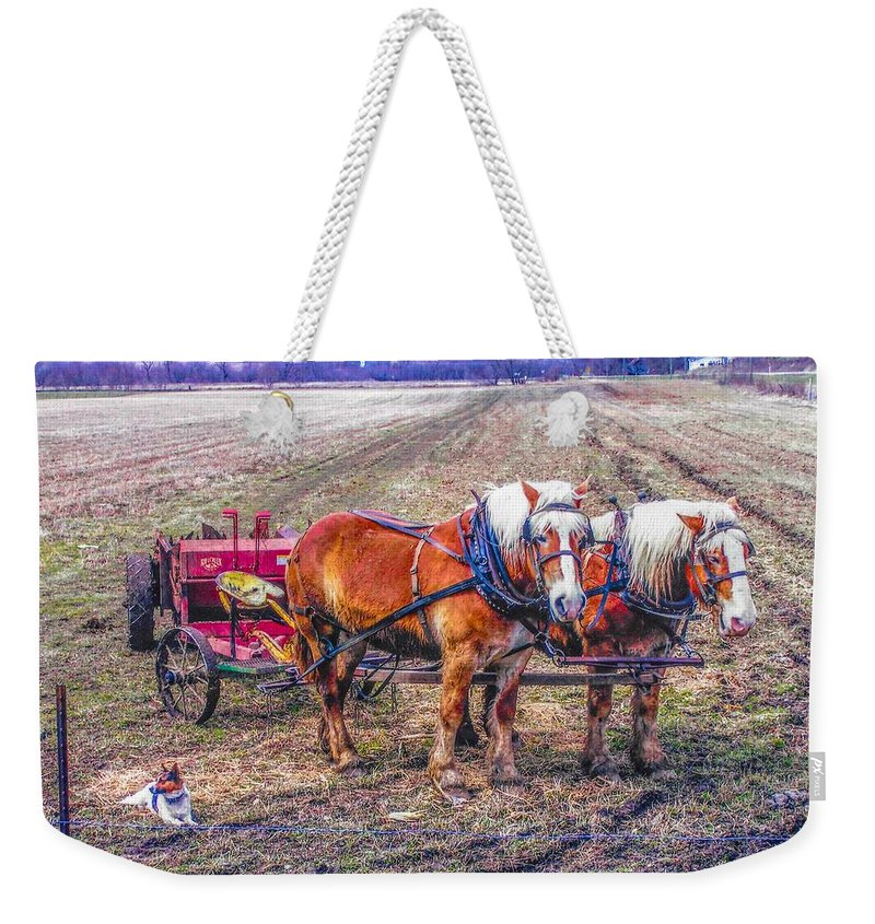 Amish Weekender Tote Bag featuring the photograph Amish Farming Team by Tommy Anderson