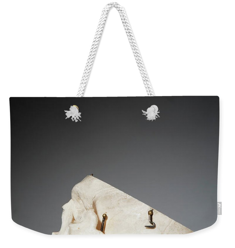 Sweden Weekender Tote Bag featuring the photograph Anatomical Model Of Human Skull by Johner Images